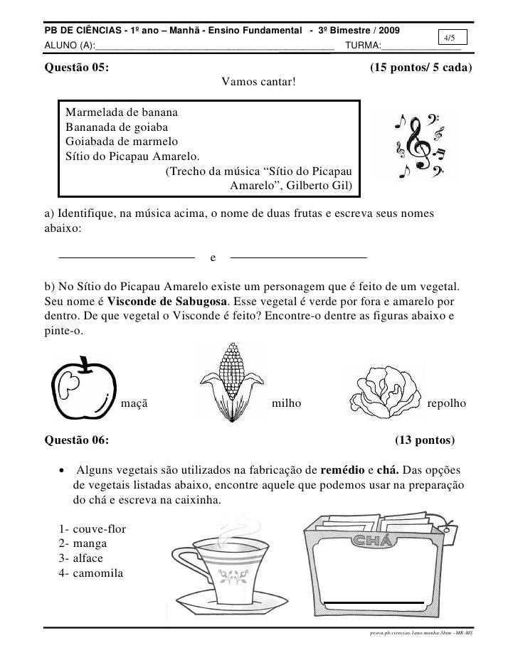 Ideias de avaliações de ciência para alunos do 3° ano
